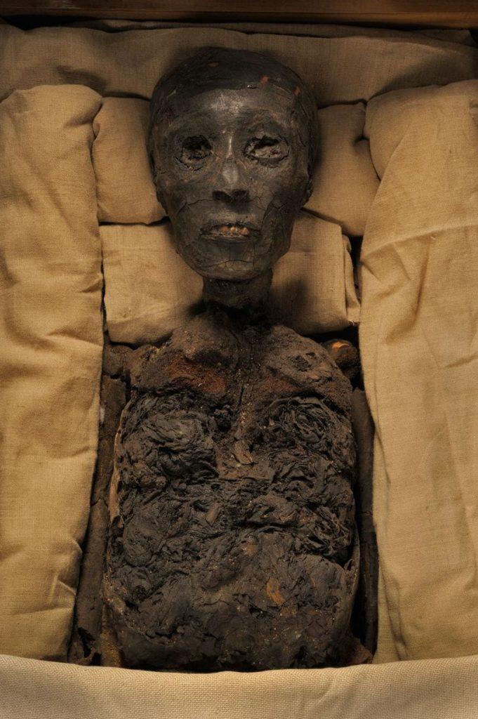 Tutankamon mumia 2 • mundo sombrio