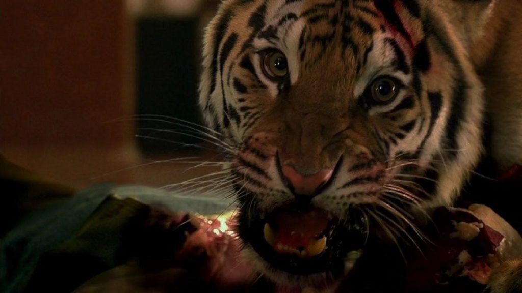 Nas garras do tigre • mundo sombrio