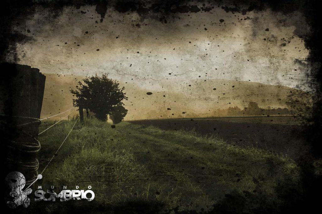 colheita dos mortos história de terror