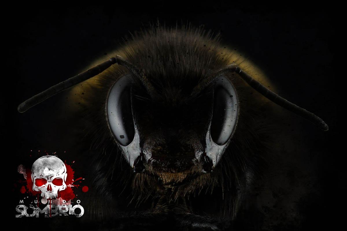 não brinque com insetos história de terror mundo sombrio