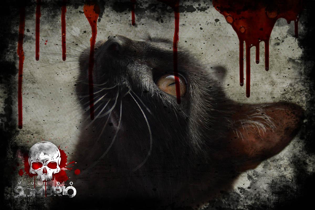 o gato preto história de terror edgar allan poe mundo sombrio