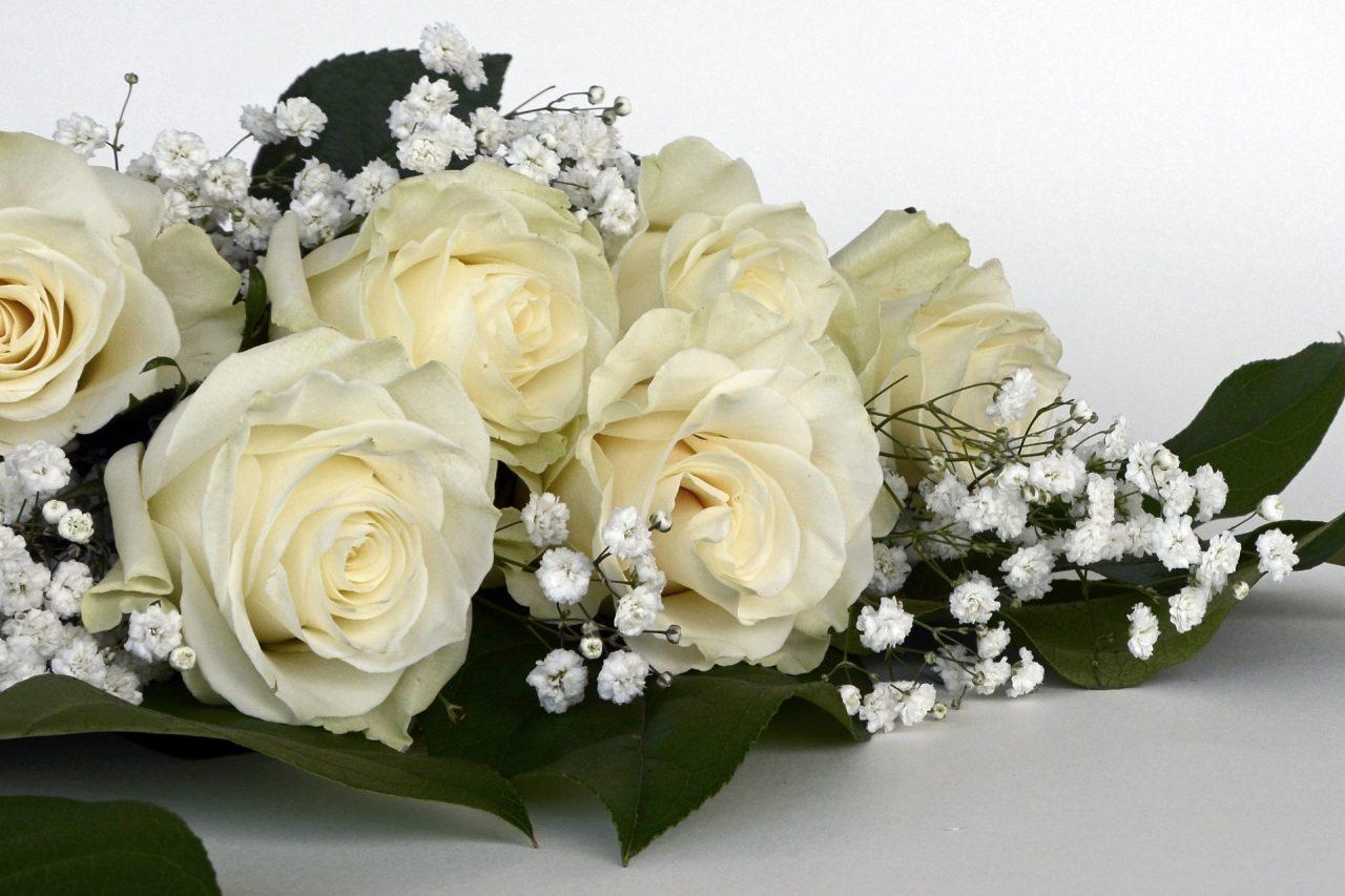 o buquê de flores brancas história de terror mundo sombrio