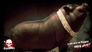 babi ngepet lendas indonésias mundo sombrio
