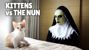 O que acontece quando gatinhos dão de cara com uma freira demoníaca gatinhos vs a freira