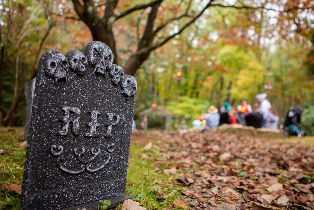 Tim burton corpse bride wedding ideas18 • mundo sombrio