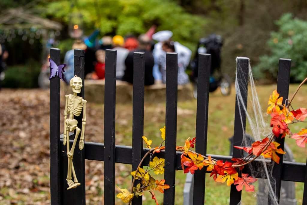 Tim burton corpse bride wedding ideas21 • mundo sombrio