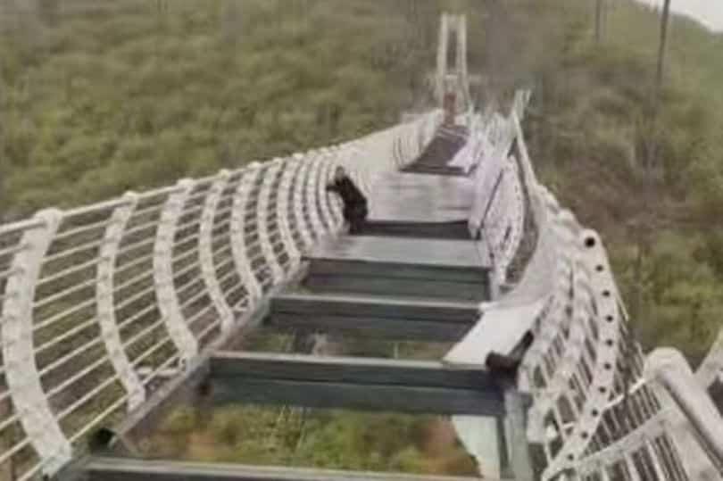 Ponte de Vidro quebra e Turista fica Pendurado